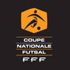 coupe-nationale-futsal